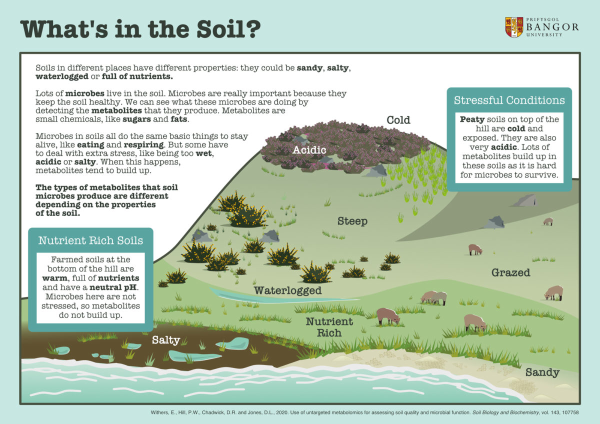 Emma Withers / Envision / What's in the soil?