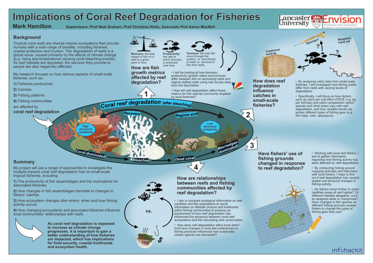 Mark Hamilton / Envision / Implications of coral reef degradation for fisheries