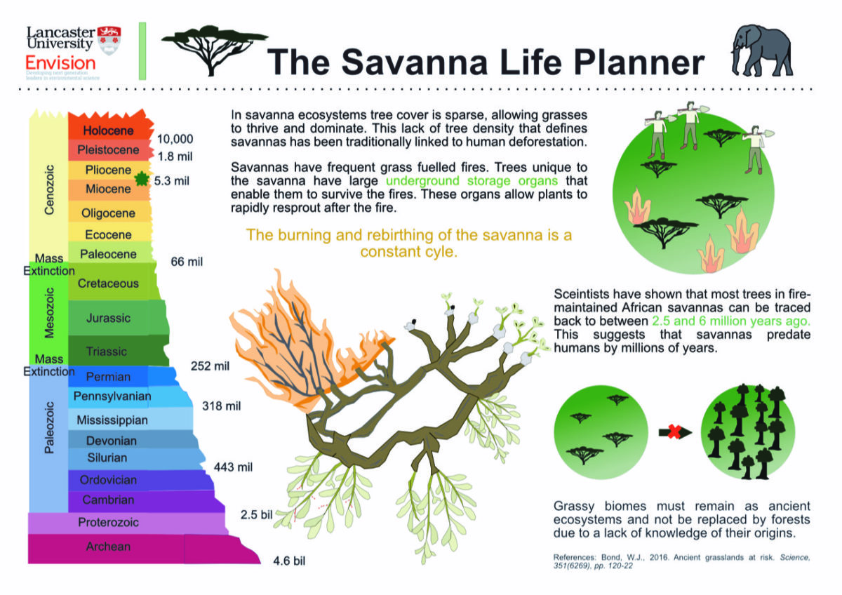 Mary Hodgson / Envision / The savanna life planner
