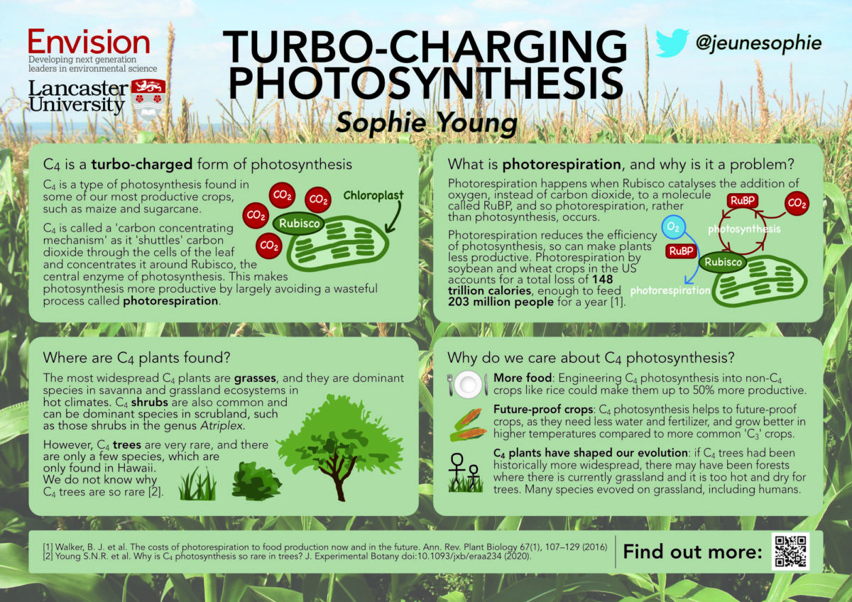 Sophie Young / Envision / Turbo-charging photosynthesis
