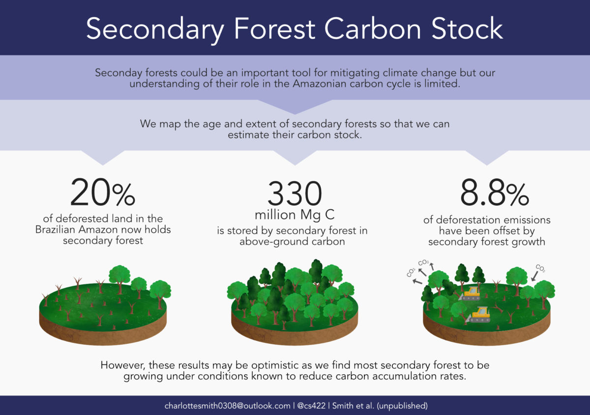 Charlotte C. Smith / Envision / Secondary forest carbon stock